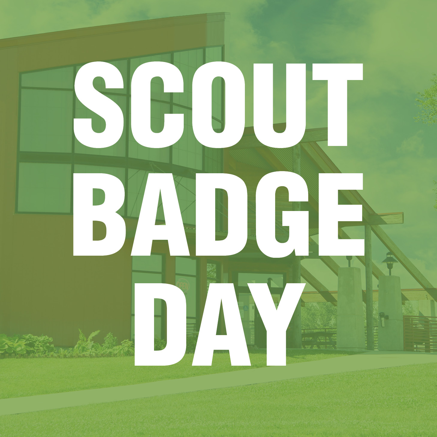 Scout Badge Day