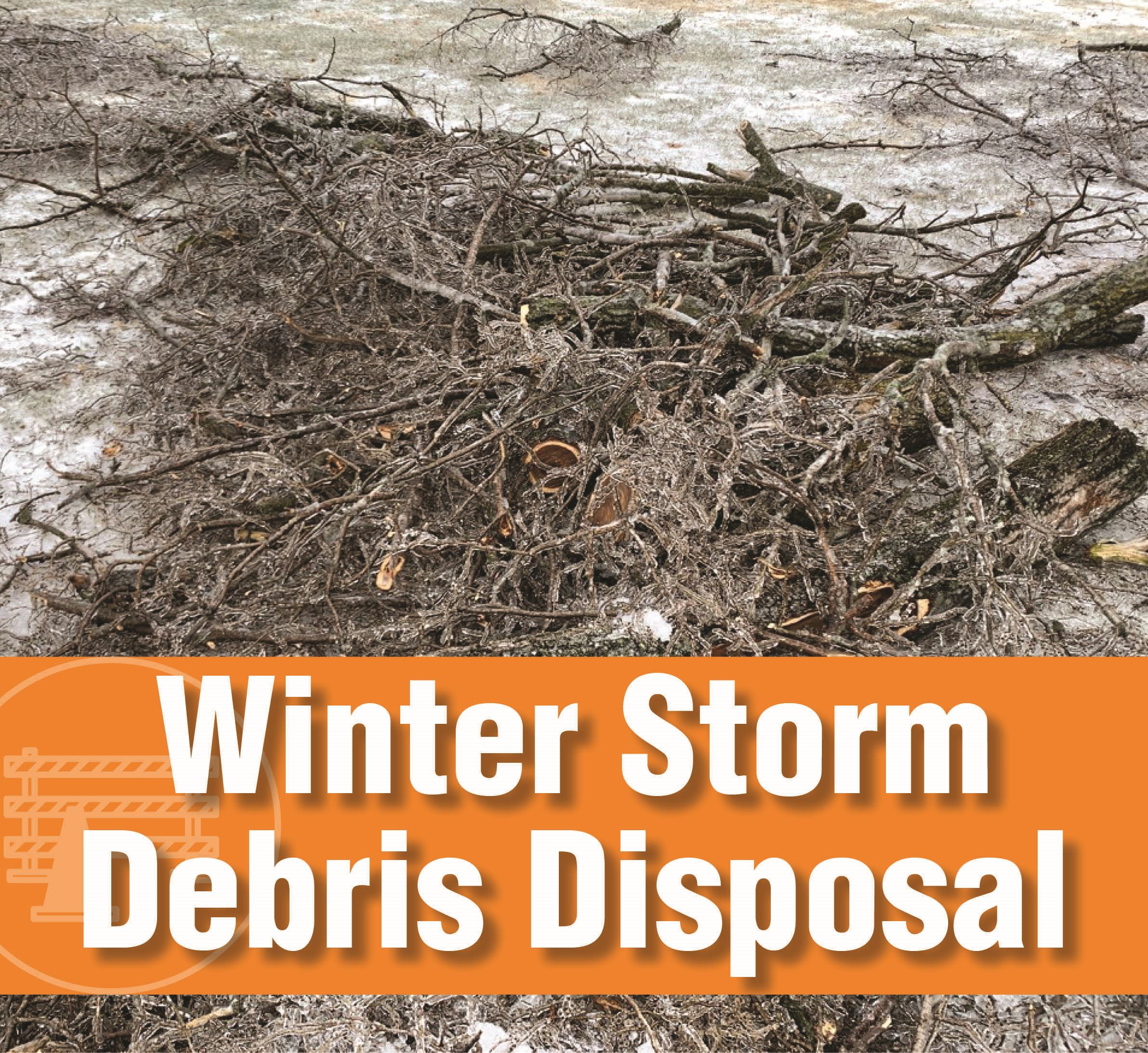 Winter Storm Disposal