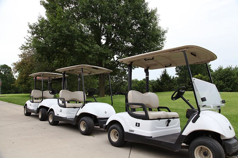 Fairview Golf Carts